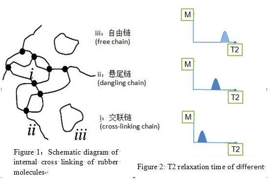 Schematic diagram of internal cross linking of rubber molecules and the T2 relaxation time