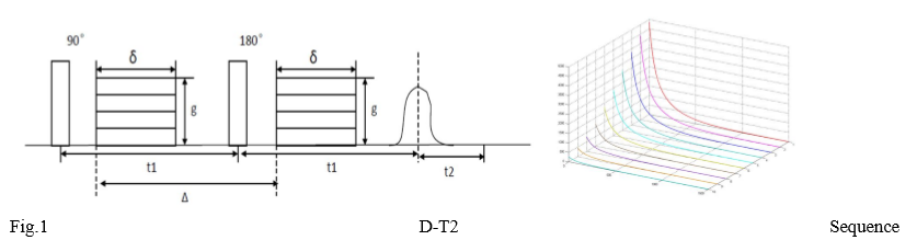 d-t2-sequence