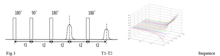 t1-t2-sequence